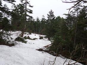 1842mピーク手前で雪が多く