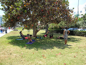 Photo: Trimmers in the park in front of the yacht club