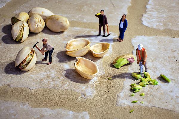 Aiutino coi pistacchi...  di Simone De Barba