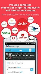 Indonesia Flight- screenshot thumbnail
