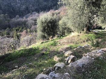 terrain à batir à Aspremont (06)