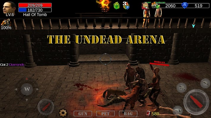 Dungeon Shooter Screenshot Image