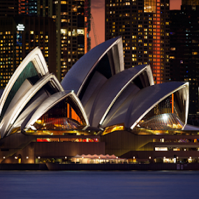 Evening Opera by Rebecca Ramaley - City,  Street & Park  Night ( orange, sunset, harbour, night, opera house, sydney, city )