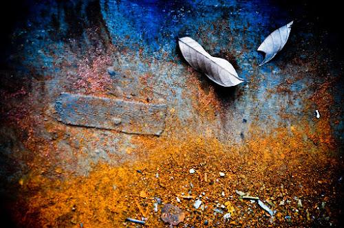Summer Rust by Xen Xen - Abstract Fine Art
