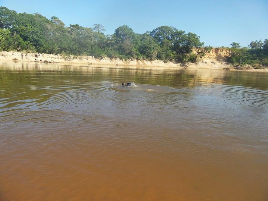 Brasil - Rota das Fronteiras  / Uma Saga pela Amazônia - Página 3 JzZfVi6l_1Drxj2CePX8SQyeef24MUsYTbyyA1UzVcQX=w890-h667-no