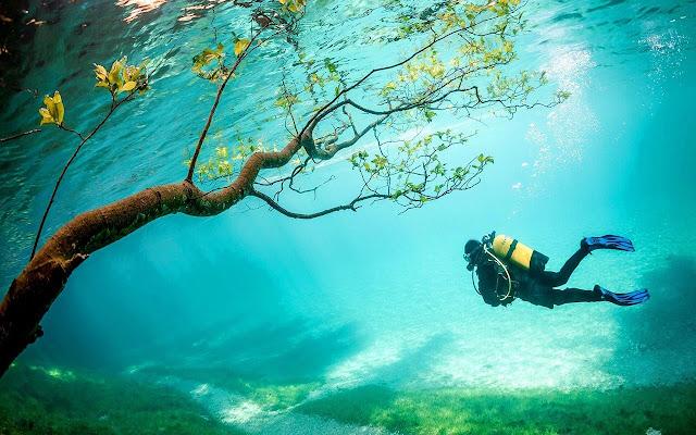 Underwater Diving - New Tab in HD