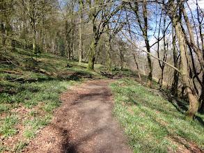 Photo: Wood over the Wye