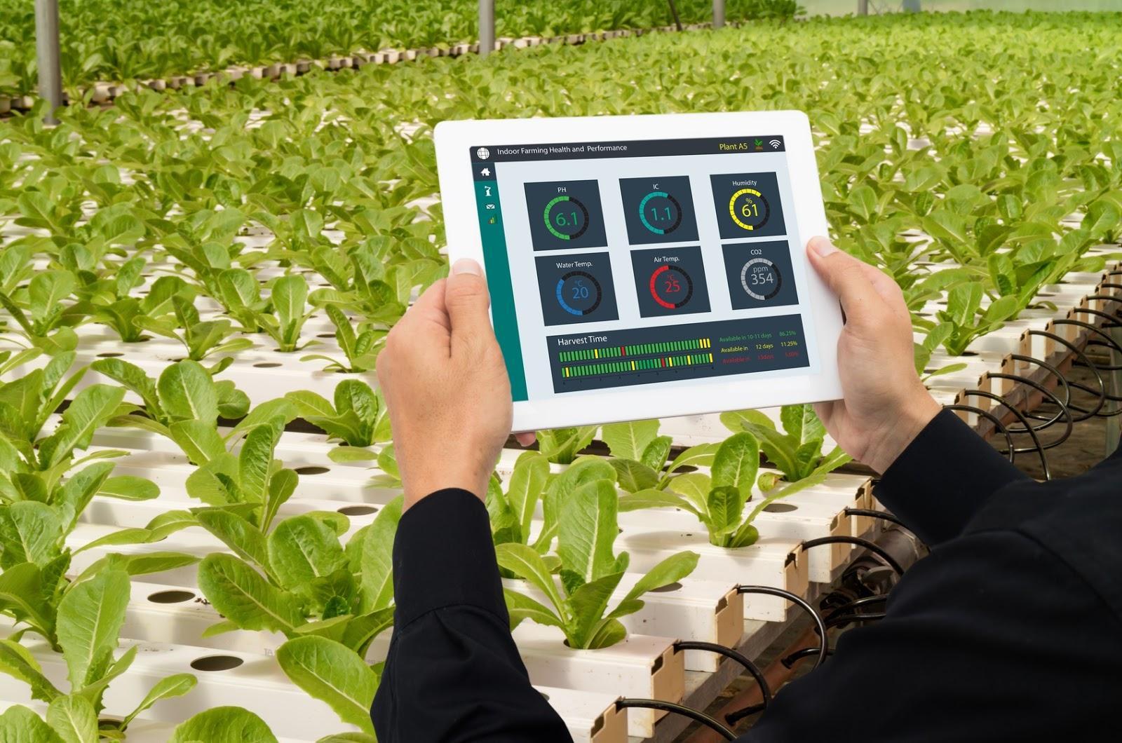 agricultura-4.0-big-data-campo