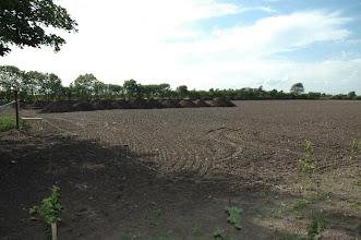Photo: Set fra østsiden over mod kennelbygningen bag jordstakkene. Her skal den første store løbegård starte indenfor de nye træer.