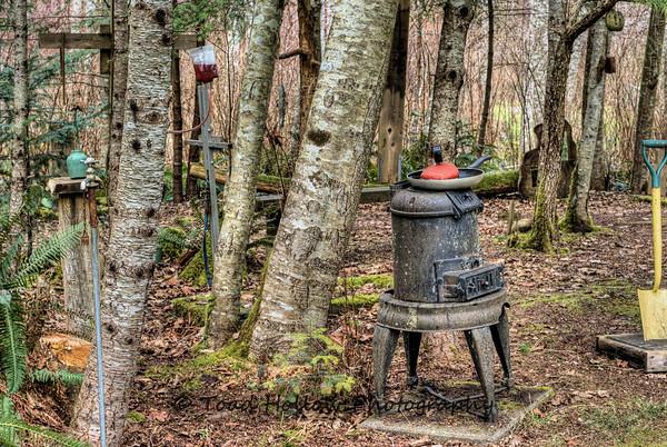 Photo: The Wacky Woods - Fanny Bay, BC, Canada