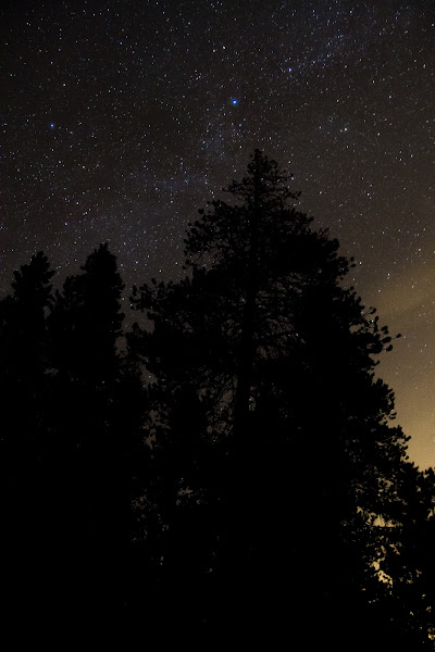 Photo: My first attempt at photographing the stars!