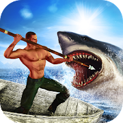 Open Shark Hunting
