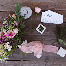 Wedding photographer Elizaveta Efimova (efimovaelizavet). Photo of 15.01.2017