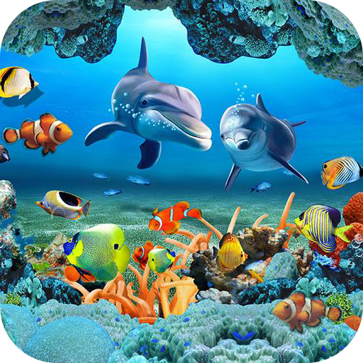 Raindrops Live Wallpaper: Download Koi Free Live Wallpaper On PC & Mac With AppKiwi