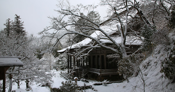 87. Shourin-in (100 Japanese Garden in Kyoto I recommend)