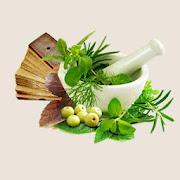 Ayurvedic- Remedies- Treatment- Herbs