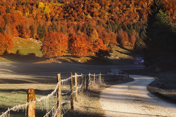 La via dell'autunno di brunosma