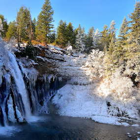 a frozen Burney Falls CA by Susan Hanson - Landscapes Weather ( waterfalls, hoar frost, ice, snow, trees, garyfonglandscapes, holiday photo contest, photocontest )