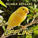 Kicau Suara Burung Kenari MP3 Offline icon