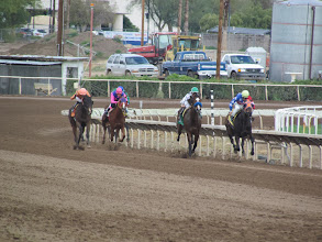 Photo: Attendees enjoyed a full card of live racing