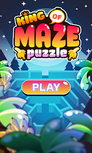 King of Maze 8