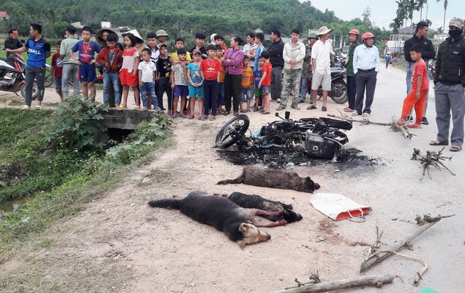 Hiện trường vụ việc người trộm chó bị dân đánh hội đồng đến chết ngày 27-2-2020 tại Yên Thành