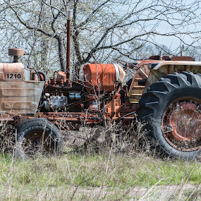 Tractor by Andrew Stevenson - Transportation Other ( old tractor, transportation, landscape, tractor, abandoned )