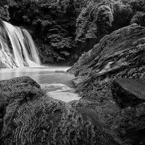 by Emil Gonzales - Landscapes Waterscapes