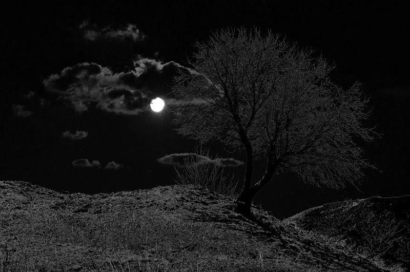 La notte di aless78