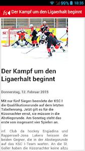 Freier Schweizer screenshot 1