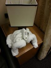 Photo: Towel animal on ms Ryndam