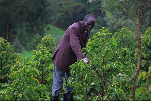 Rituel Café - café Kenya éthique