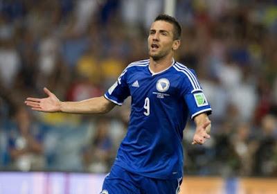 Vedad Ibišević is de nieuwe aanvaller van Schalke 04