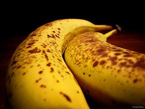 Photo: July 23, 2012 - Monkey Fruit #creative366project curated by +Jeff Matsuya and +Takahiro Yamamoto #under5k +Creative 366 Project #leadinglinesmonday
