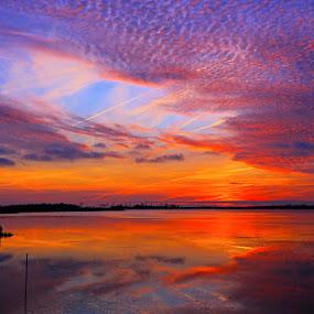 Sunset at Back Bay by Shixing Wen - Landscapes Sunsets & Sunrises ( sunset, twilight, nature photography, virginia beach, back bay national wildlife refuge )