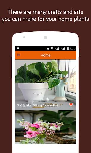 Plants DIY Pots and Crafts