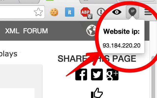 WebsiteIp finder