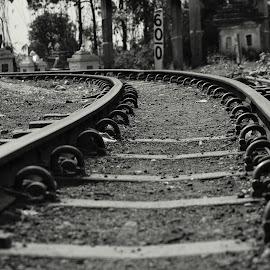 Toytrain track by Deblina Bhunia - Transportation Railway Tracks ( black and white, railroad, tracks,  )