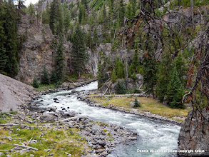 Photo: Stream in Yellowstone