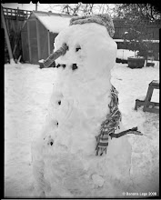 Photo: Snowman mk2, before Xena stole the arms to chew.  4x5 view camera, paper negative, yellow filter.