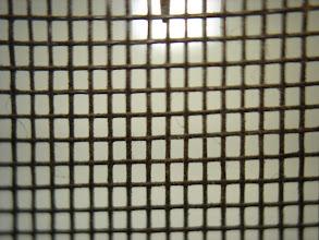 Photo: window/door screen