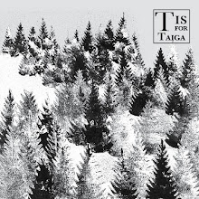 Photo: Maggie Ruddy - Alphabet of Physical Geography - T is for Taig