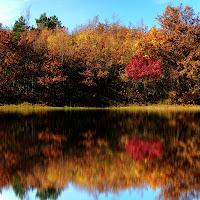 Riflessi d'autunno... di