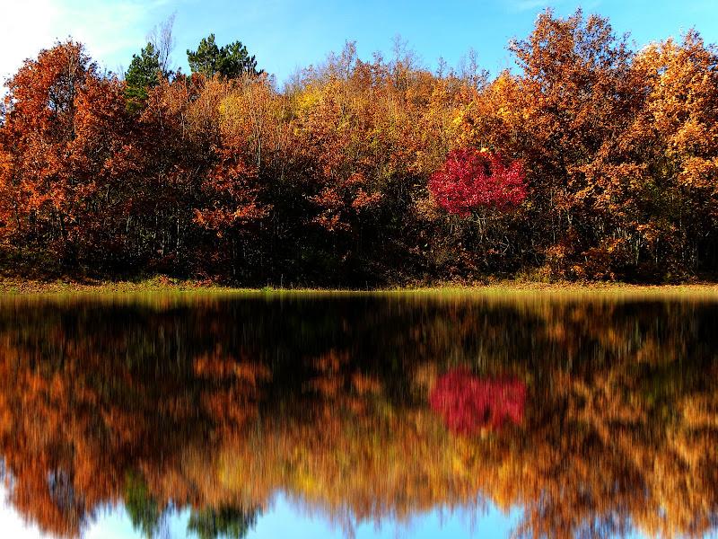 Riflessi d'autunno... di GabrieleT