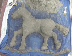 Photo: My big pony