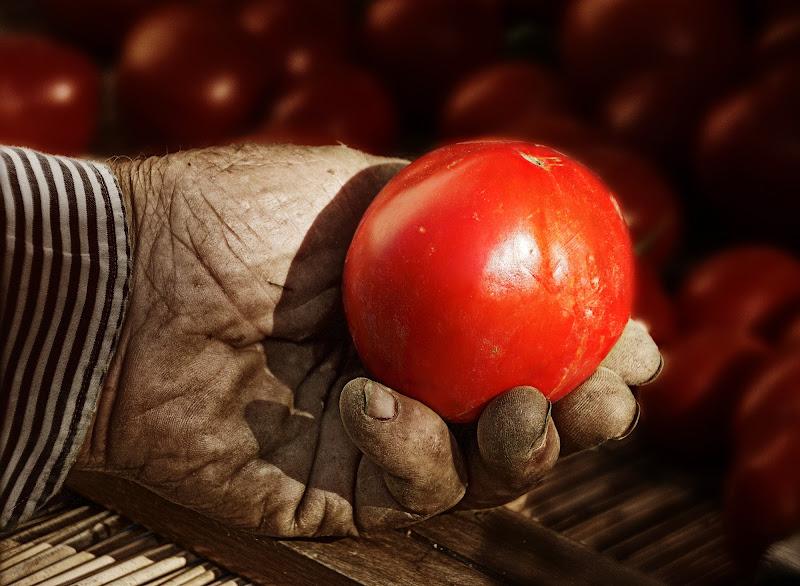 La mano del contadino di Patrix