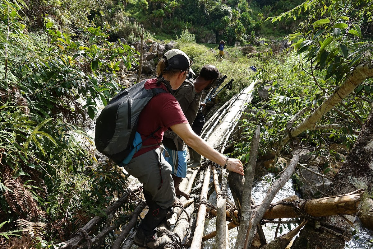 Indonesia. Papua Baliem Valley Trekking. Narrow wood log bridge to Sobaham