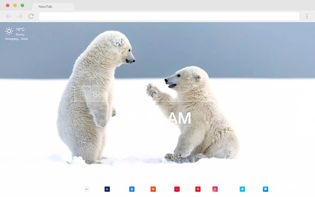 Wildlife popular photography HD new tab theme