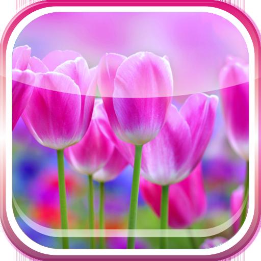 Spring Live Wallpaper 個人化 App LOGO-硬是要APP