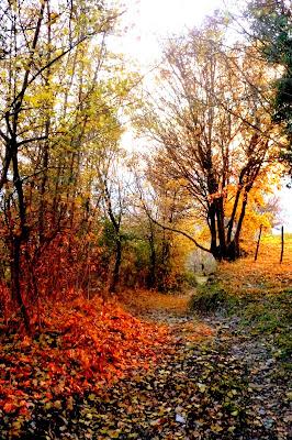 La via che porta al tramonto di dotlinob